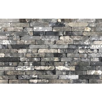 Briques anciennes - Parement mural - Récupération - Gris